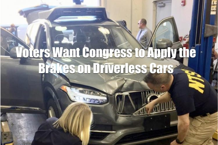 Driverless Car Crash